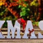 ¡Feliz Navidad y próspero 2015!