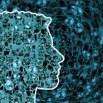 Afrontar cambios laborales en el siglo XXI: ¿Qué nos depara el futuro?