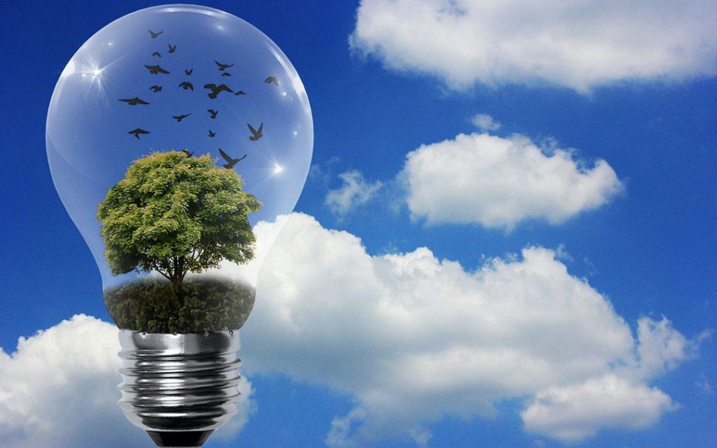 trabajo en eficiencia energética