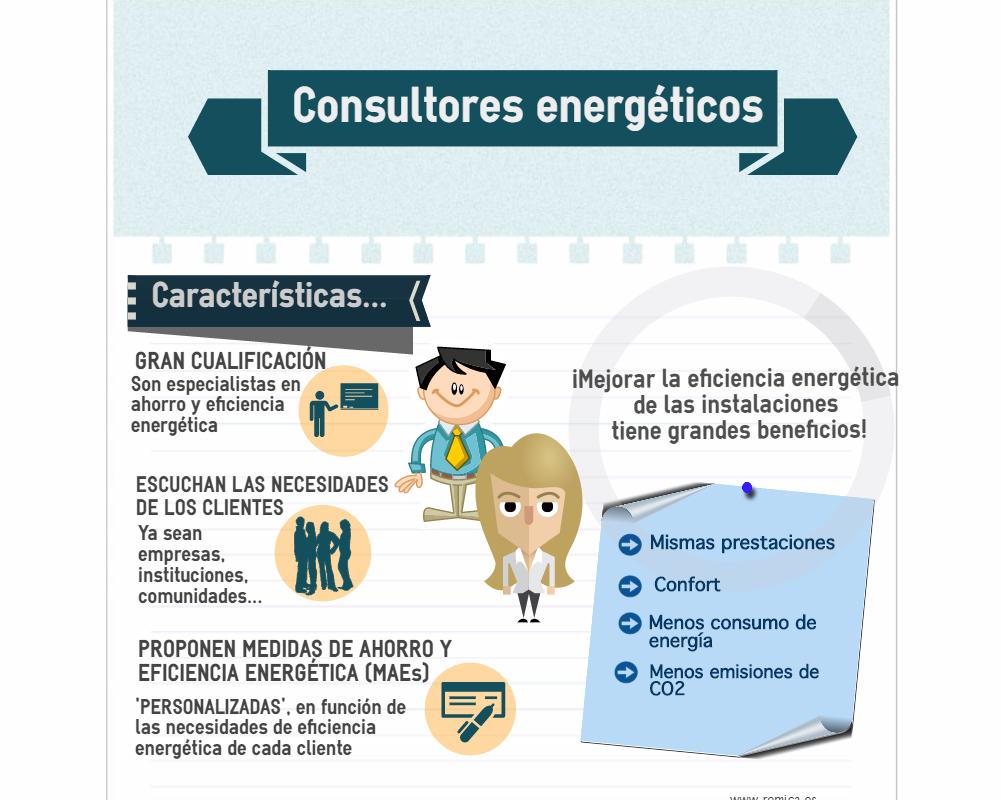 características del consultor energético