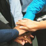 ¿Cómo es el trabajo en equipo entre los empleados más jóvenes?