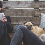 Cuatro 'acuerdos' para la felicidad en el trabajo